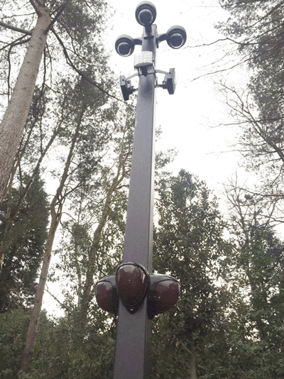 D-TECT and Clarius Pole Mount